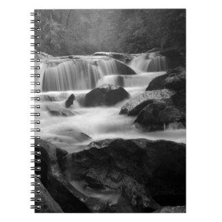 Bull Pen Cascades Notebook