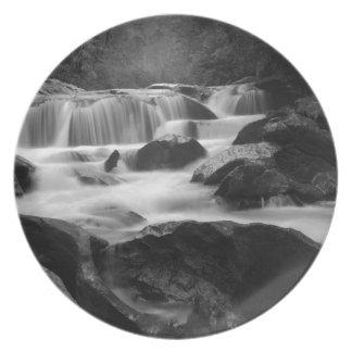 Bull Pen Cascades Plate