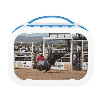 Bull Rider Lunch Boxes