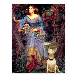 Bull Terrier 1 - Ophelia 1 Post Cards