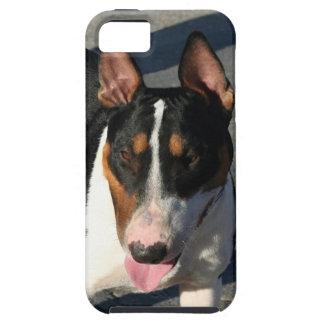 Bull-terrier Étuis iPhone 5