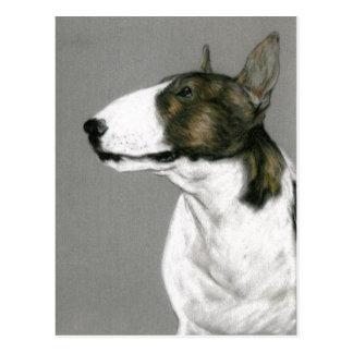 Bull Terrier Dog Art Postcard