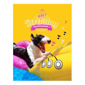 "Bull Terrier ""Happy Birthday"" Photo Card"