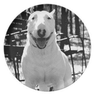 Bull terrier party plate