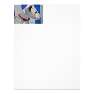 bull-terrier-.png full color flyer