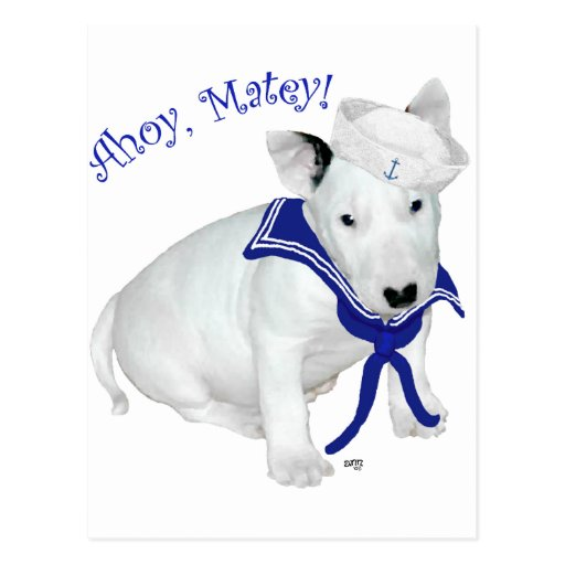 Bull Terrier Puppy Sailor Post Cards