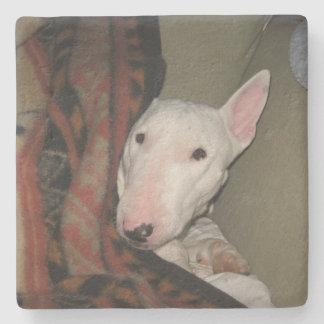 Bull Terrier Snuggled Under a Blanket (Colour) Stone Coaster