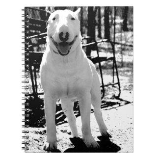 Bull terrier spiral notebook