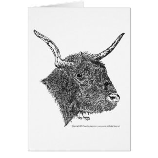 Bull with Horns Pen & Ink Drawing Card
