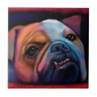 Bulldog Ceramic Tiles