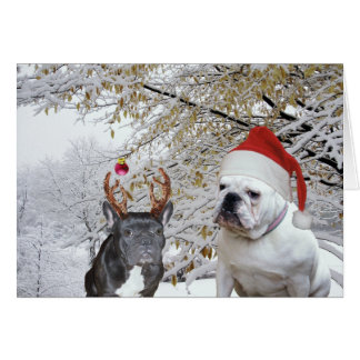 Bulldog Christmas 2 Card