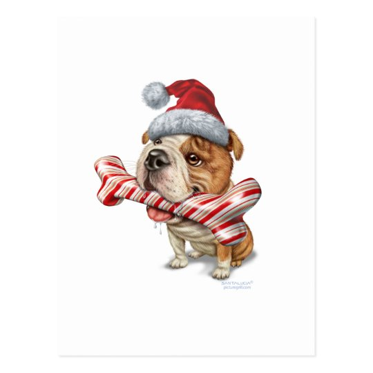 Bulldog christmas postcard