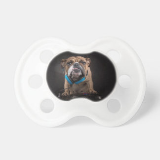 bulldog dj - dj dog pacifier
