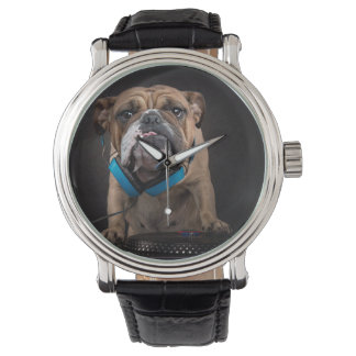 bulldog dj - dj dog watch