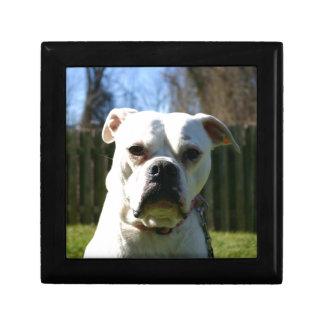 Bulldog Face Jewelry Boxes