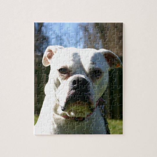 Bulldog Face Jigsaw Puzzle
