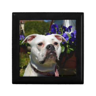 Bulldog Flowers Jewelry Boxes