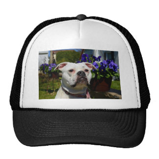 Bulldog Flowers Trucker Hat