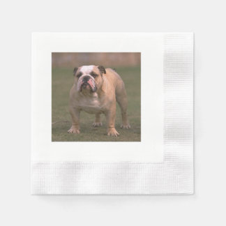 bulldog full 2.png paper napkins
