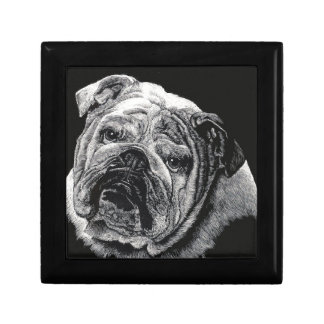 Bulldog Gift Boxes