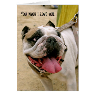 Bulldog Love Anyone That Feeds Me Greeting Card