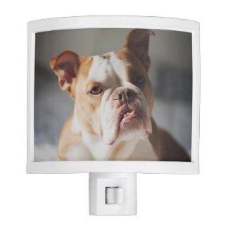 Bulldog Night Light - Miss Olivia