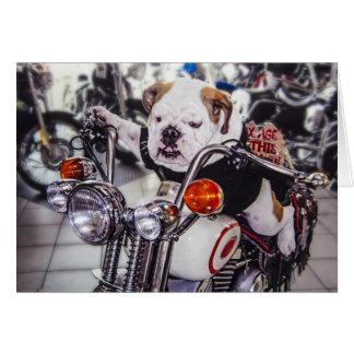 Bulldog on Motorcycle Greeting Card