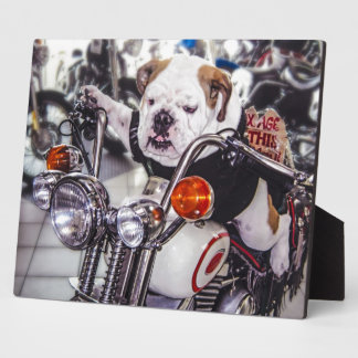 Bulldog on Motorcycle Photo Plaque