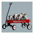 Bulldog Puppies In Wagon Print