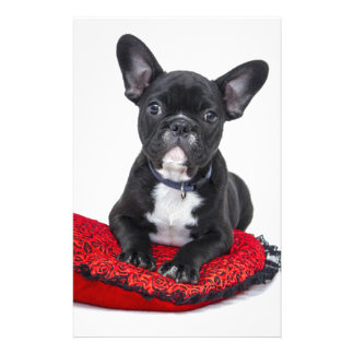 Bulldog puppy sitting on red heart shaped cushion stationery design