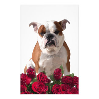 Bulldog Red Roses Bloom Birthday Anniversary Custom Stationery