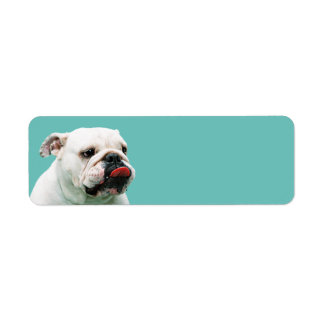 Bulldog Return Address Label