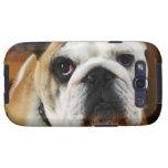 Bulldog Samsung Galaxy Case Galaxy S3 Covers
