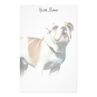Bulldog stationary stationery paper
