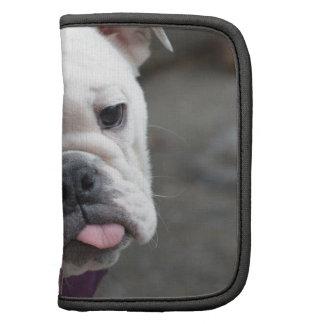 Bulldog Taunt Planners