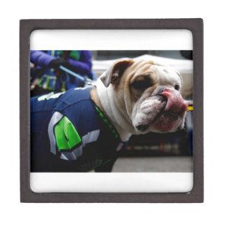 Bulldog Team Spirit Premium Jewelry Box