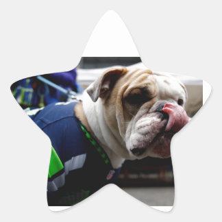 Bulldog Team Spirit Star Sticker