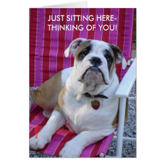 BULLDOG THINKING OF YOU BLANK CARD! CARD
