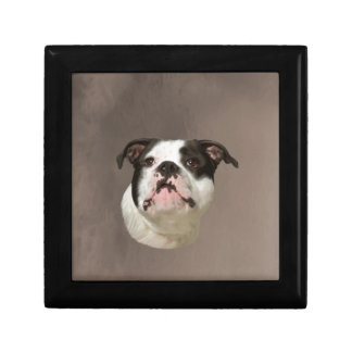 Bulldog Water Color Art Painting Gift Boxes