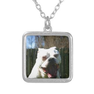Bulldog Yawn Silver Plated Necklace