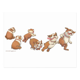 bulldogs horizontal postcard