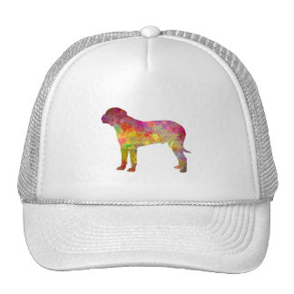 Bullma in watercolor.png trucker hat