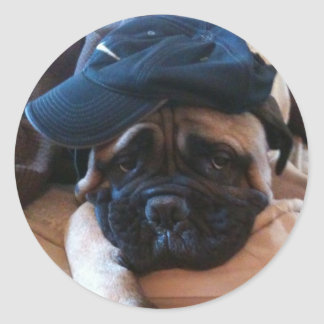 Bullmastiff Pablo sticker 2