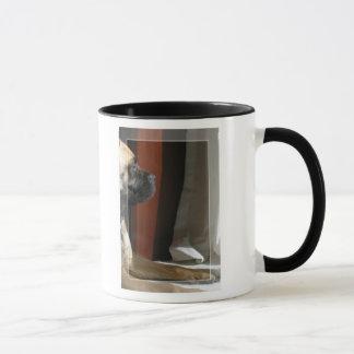 Bullmastiff Sphinx Mug