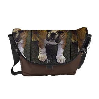 Bully! Adorable English Bulldog Puppy Courier Bag