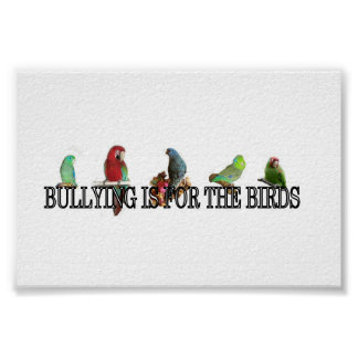 Bullying is for the birds Poster