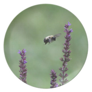 Bumble Bee accessories Plate