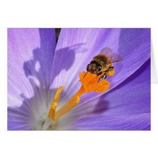 Bumble Bee On Purple Flower Blank Photo Card
