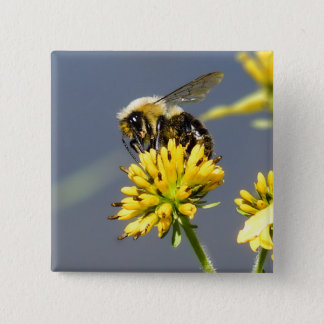 Bumble Bee on Yellow Wildflower Button