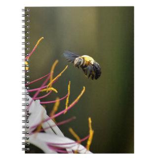 BUMBLE BEE QUEENSLAND AUSTRALIA NOTEBOOK